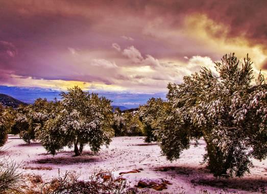 Pedroadriano1959 en Hamelin: Paisaje  (Granada), #paisaje #naturaleza #amelin.official #photography #photographer #invierno20