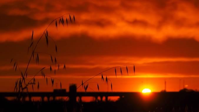 Lidia__lmr38 en Hamelin: Paisaje  (Zaragoza), El cielo cayó, el cielo se convirtió en fuego!  #cielos #cielosrojos #atardecer #pasion_natura