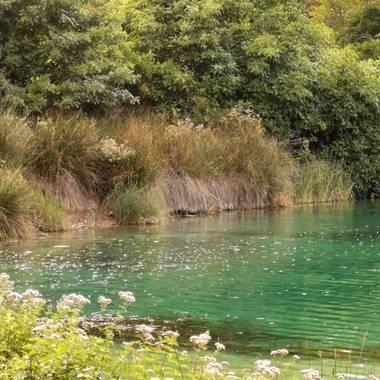 Lasonymegamas en Hamelin: Paisaje  (Ruidera), Laguna