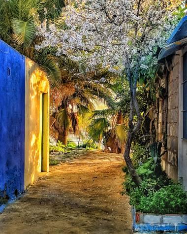 bonet21 en Hamelin: Paisaje  (San Fernando), Un rinconcito de colores en el sur #invierno20
