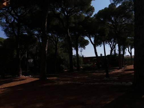 Erykande95 en Hamelin: Paisaje  (Marbella), Aire puro  #tranquilidad #paz #natualeza #marbella #hermoso