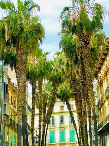 su en Hamelin: Paisaje  (Málaga), Málaga