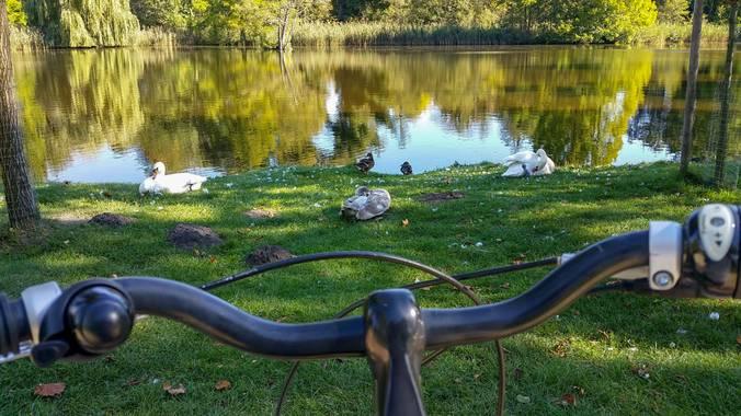 carolinatdt en Hamelin: Paisaje  (Innenstadt), #ParquesyJardines #postdam #alemania #travel #viajar #lago #tranquilidad