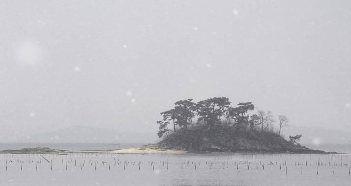 Ignicapillus en Hamelin: Paisaje  (South Korea), Bahía de Suncheon  Tal como tenía previsto, en mi breve viaje a Corea del Sur (enero 2017), apenas hubo oc...