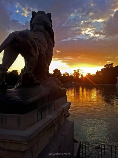 V. Andrés Pérez  en Hamelin: Paisaje  (Madrid), Estaque grande del parque del Retiro de Madrid.  #ParquesyJardines #otoñoenmadrid  #paisajes #otoño #madrid...