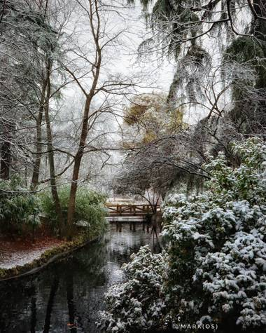 MARK(OS) - Mis fotos de Madrid en Hamelin: Paisaje  (Madrid), The Warmest Coldness. (III)  #invierno20 #invierno #winter #frio #coldness #nieve #snow #parq...