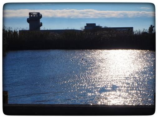 Chimo943 en Hamelin: Paisaje, Brillos del sol