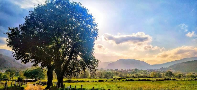 Sortueta en Hamelin: Paisaje  (Castro-Urdiales), Luz de primavera