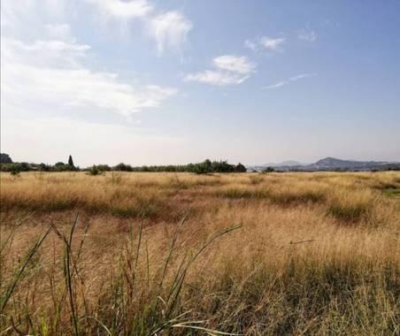 VickyOnTheRocks en Hamelin: Paisaje  (Liria), #campos #fields #miscaminatas #miscaminos #senderos #belleza #caminaydisfruta #otoño