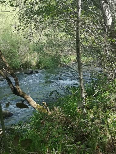 Lunamartin en Hamelin: Paisaje, Cabecera del río Guadiato