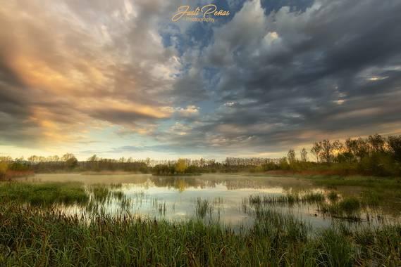 Justi en Hamelin: Paisaje  (Sils), Amanece en el Edén.  Es una zona húmeda que corresponde al último vestigio de lo que era un antiguo lago natural situado...
