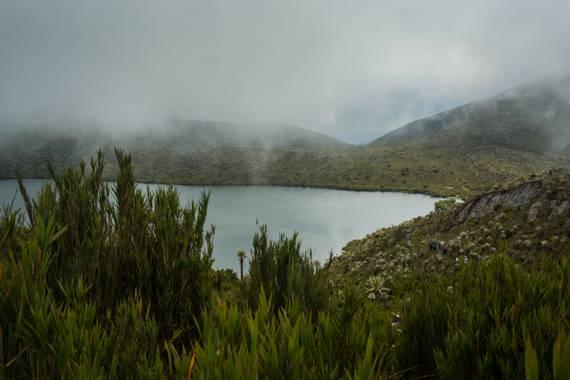 jgabriellpenuela en Hamelin: Paisaje  (Guasca), Laguna de Tibatiquica es la llamada laguna de Guasca dentro de las Lagunas de Siecha, aquí se realizaban lo...