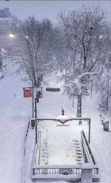 Yamira Guijarro  en Hamelin: Paisaje  (Madrid), Un invierno diferente.  Madrid 01/21 #Invierno20