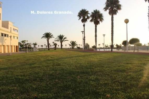 M.Dolores Granado Guerrero en Hamelin: Paisaje, #parquesypaisajes#  Echadas el jardín en la playa, ( Cádiz).
