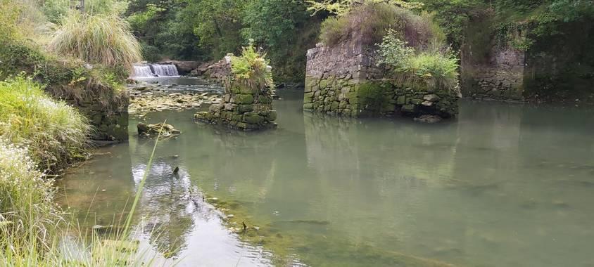 Itzal79 en Hamelin: Paisaje  (Gatica), Paseo por la ria del castillo de Butron
