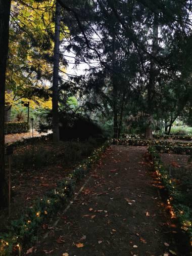 Trasgusmc7 en Hamelin: Paisaje  (Colmenar Viejo), #parquesyjardines Botánico de Madrid  @trasgusmc7  Mari Carmen
