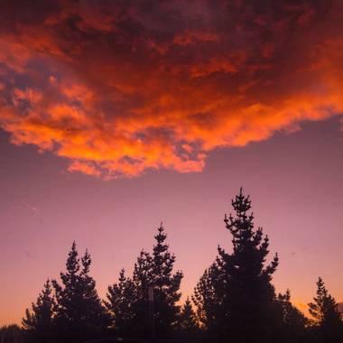 poncelucia61 en Hamelin: Paisaje, 🌲✨   #atardecer #sunset