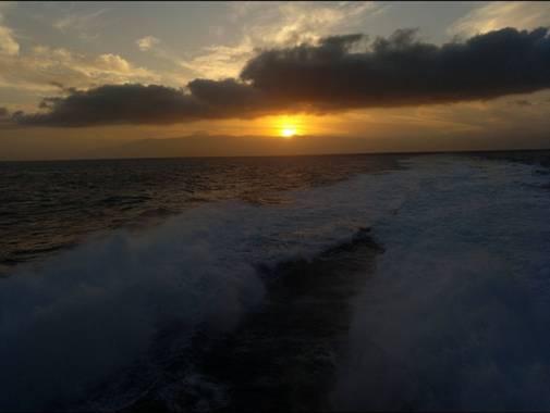Yesicav537 en Hamelin: Fauna, #sundown