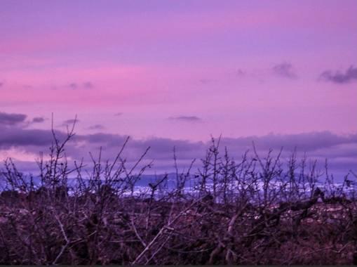 Kiralileahu en Hamelin: Paisaje, #invierno20 -bonito atardecer