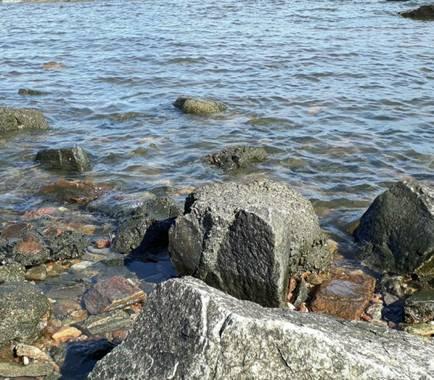 K.loresosa en Hamelin: Paisaje, A la orilla del mar