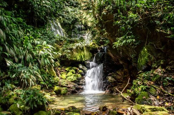 Camiloacca90 en Hamelin: Paisaje  (Sabanalarga), Un lugar mágico, donde nace un hermoso manantial en #sabanalarga #casanare #sabanatravel #agua #Landscape ...
