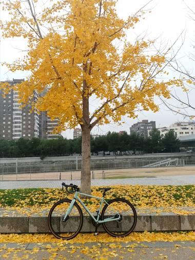 Trasgusmc7 en Hamelin: Paisaje  (Madrid), #parquesyjardines @trasgusmc7 Mari Carmen