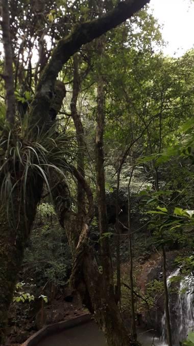 messergisela en Hamelin: Paisaje  (Guaraní)