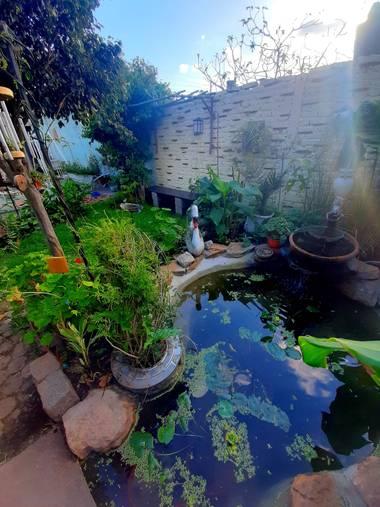 jorgedanielricci en Hamelin: Paisaje  (Villa de Mayo), Mi pequeño estanque.