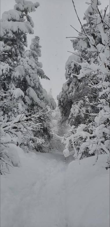 Sarycas90 en Hamelin: Paisaje  (Balmaseda), #invierno2020 #filomena #NevadaBilbao #snow
