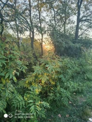 Nohokai.sk en Hamelin: Paisaje  (Basauri), Naturaleza al amanecer