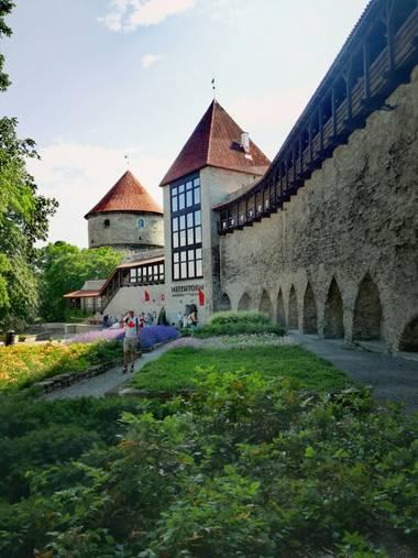 Rosa Corbo en Hamelin: Paisaje  (Kesklinna linnaosa), Bastión de la muralla defensiva de Tallinn, del siglo XIII. Se puede observar un pasillo de madera qu...