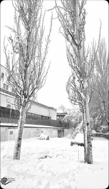 Soryknoxfotografias en Hamelin: Paisaje  (Madrid), #invierno20#paisaje#nieve