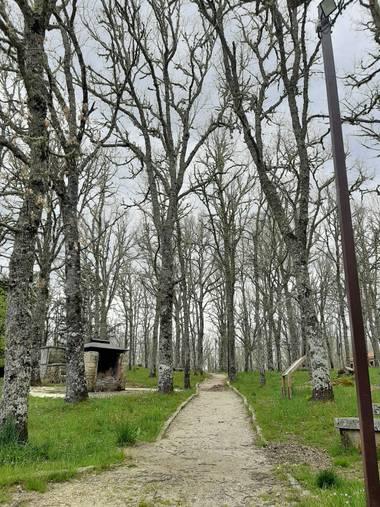 cariname6 en Hamelin: Paisaje  (Robleda), Río Frío. Robleda