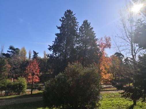 iambutterflyspirit en Hamelin: Paisaje  (Madrid), Parque de Berlín #ParquesyJardines