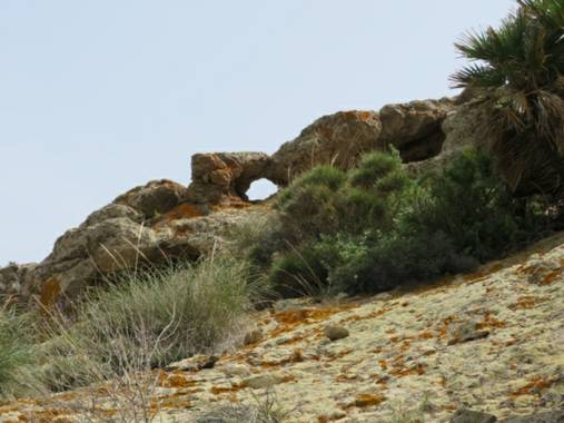 Solerantonio2 en Hamelin: Paisaje  (Níjar), Malformaciones naturales