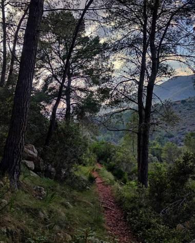 aidalzira en Hamelin: Paisaje  (Llíber), Montañera de llíber,tarde de paseo. #paisajes #paisaje