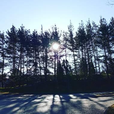 Nativi70 en Hamelin: Paisaje  (Llanera), #paisajesdeasturias #paisajesnaturales #otoño