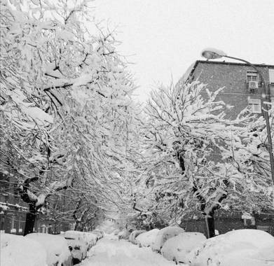 Pilicupa en Hamelin: Paisaje  (Madrid), #invierno20