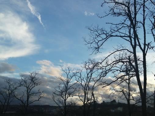 Susandresro en Hamelin: Paisaje  (Lugo), Trees and sky!