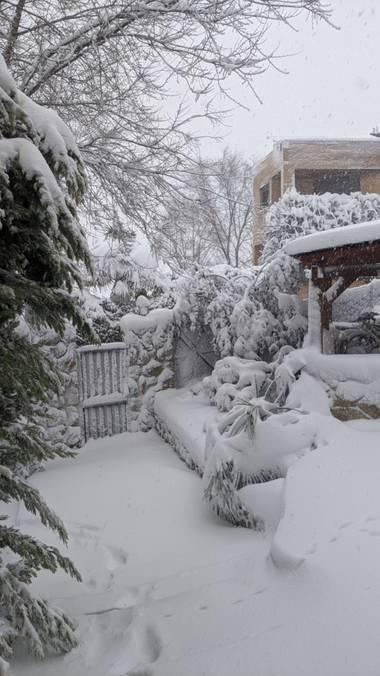 Anaortega2010 en Hamelin: Paisaje  (Las Rozas de Madrid), #invierno20 #nevada2021 #bellezasdelanaturaleza #destruccion