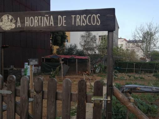 Susandresro en Hamelin: Fauna  (Lugo), Lugo