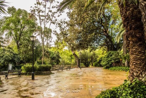 ramosbarbero.jm en Hamelin: Paisaje, #paisajesyjardines  en sevilla, parque maria luisa en un dia lluvioso