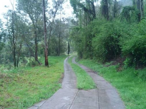 David_947 en Hamelin: Paisaje  (Xochimilco)