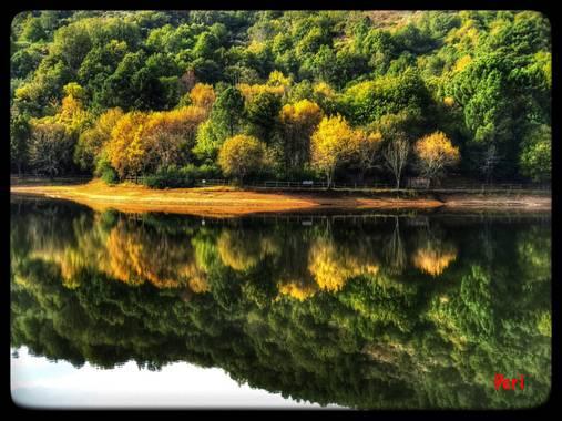 Smperi555 en Hamelin: Paisaje, Reflejos, colores, otoño, Castilla y León.