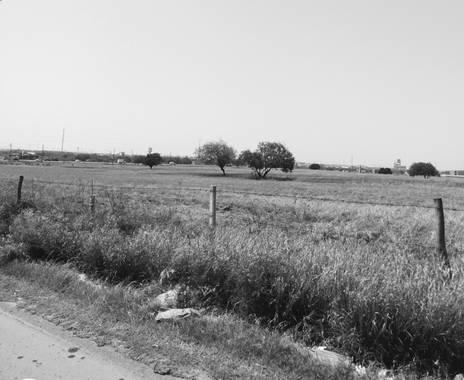 garcianunezsherlyn474 en Hamelin: Paisaje, La vida no siempre tiene que ser de colores al igual que la fotografía 🍃 tampoco tienen que ser perfecta, sol...