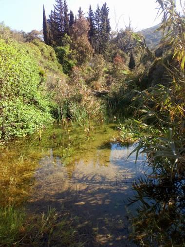 Apasnau75 en Hamelin: Paisaje  (Málaga), Encontrando pequeños oasis...