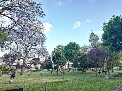 Susandresro en Hamelin: Paisaje, Parque Frigsa, Lugo.