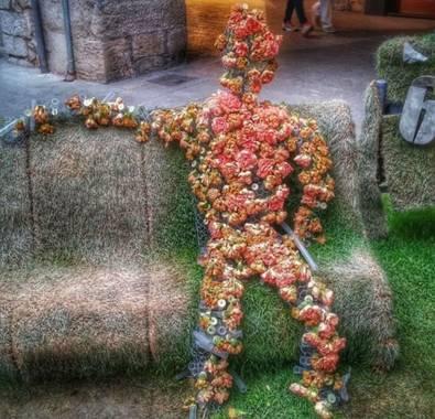 Manelsersol en Hamelin: Flora  (Gerona), #Portrait #Flora #Flores #Naturaleza   La figura floral.