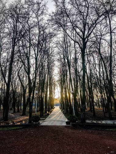 Conbyconv en Hamelin: Paisaje, #parquesyjardines