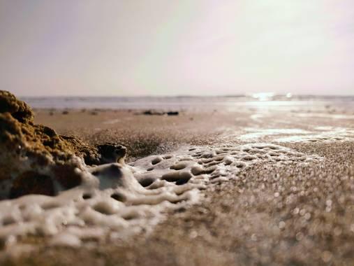 Lydia Glez en Hamelin: Paisaje  (Chiclana de la Frontera), #naturaleza #playagaditana playa de la barrosa
